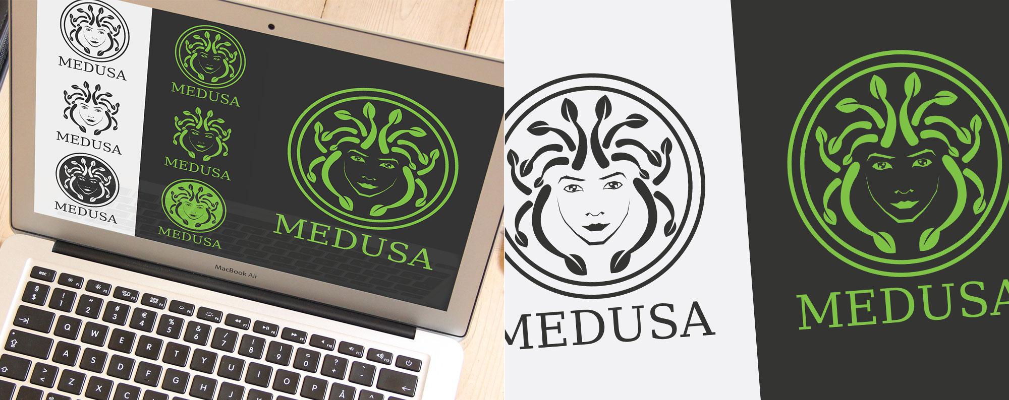 medusa-project-content-1